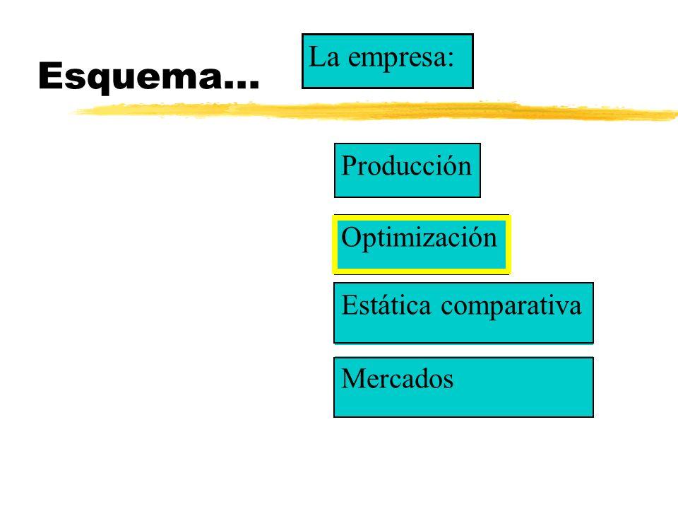 Esquema... La empresa: Producción Optimización Estática comparativa
