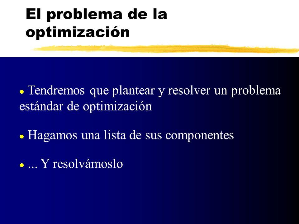 El problema de la optimización