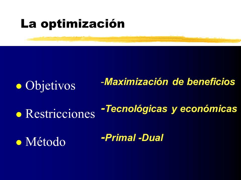 Objetivos Restricciones Método La optimización