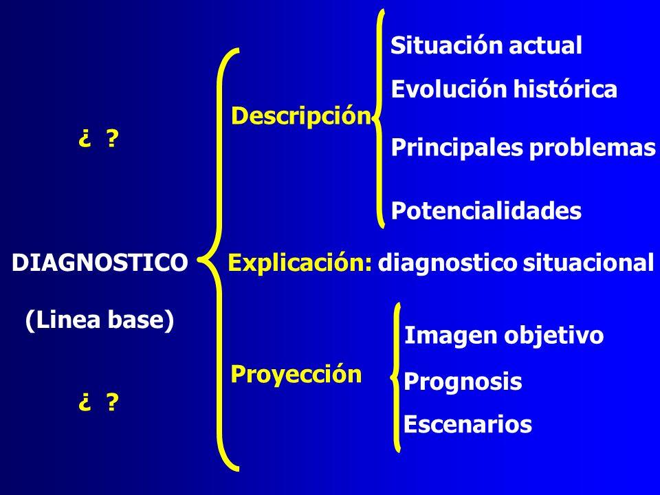 Situación actual Evolución histórica. Descripción. ¿ Principales problemas. Potencialidades.
