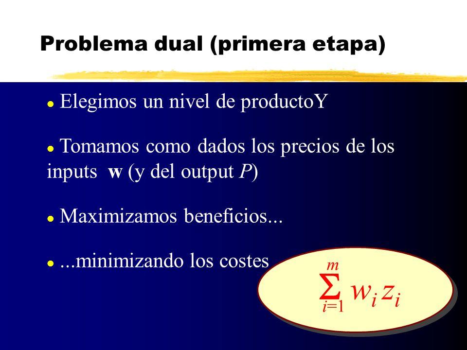 Problema dual (primera etapa)