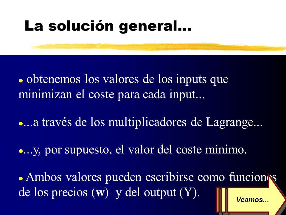 La solución general... obtenemos los valores de los inputs que minimizan el coste para cada input...