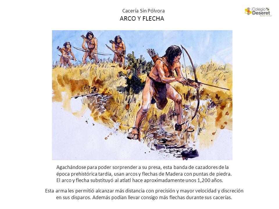 Cacería Sin Pólvora ARCO Y FLECHA