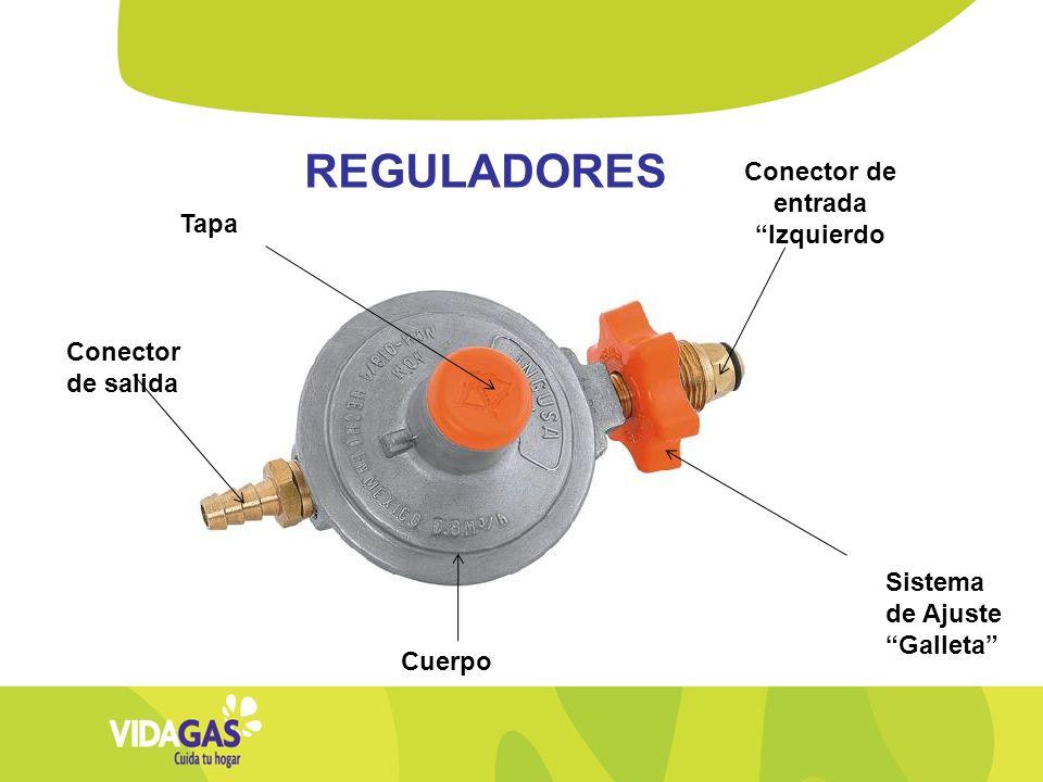 Conector de entrada Izquierdo