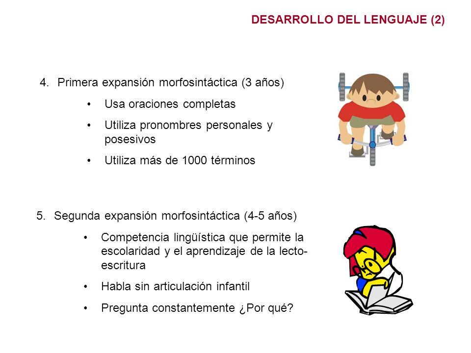 DESARROLLO DEL LENGUAJE (2)