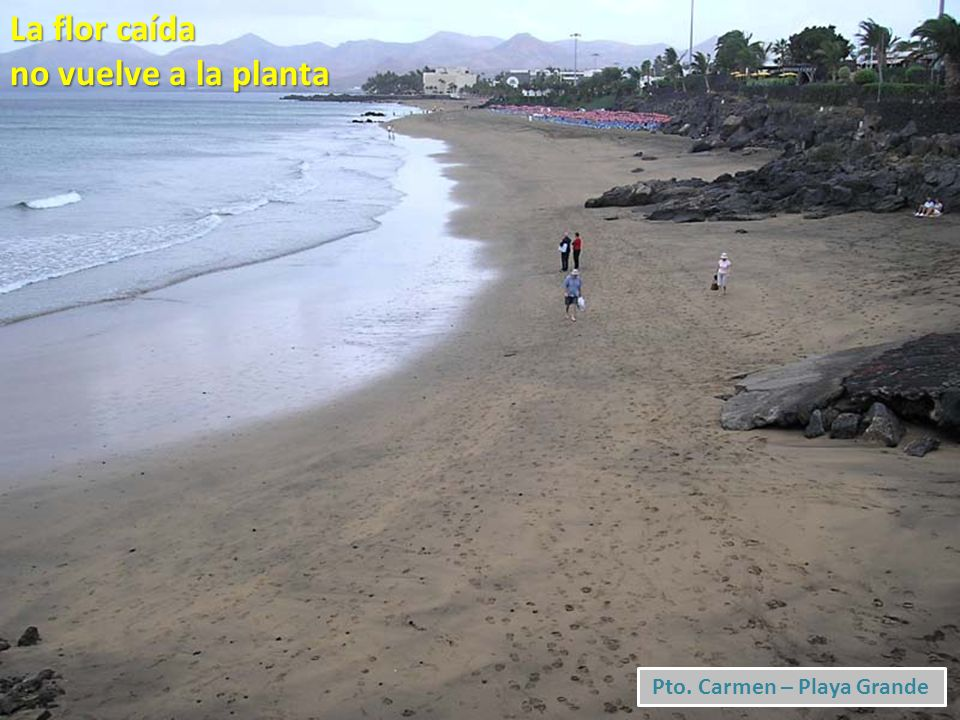 Pto. Carmen – Playa Grande