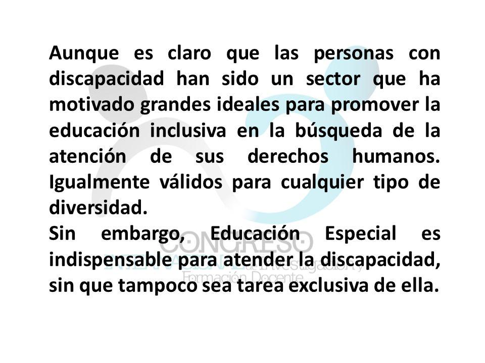 Aunque es claro que las personas con discapacidad han sido un sector que ha motivado grandes ideales para promover la educación inclusiva en la búsqueda de la atención de sus derechos humanos. Igualmente válidos para cualquier tipo de diversidad.