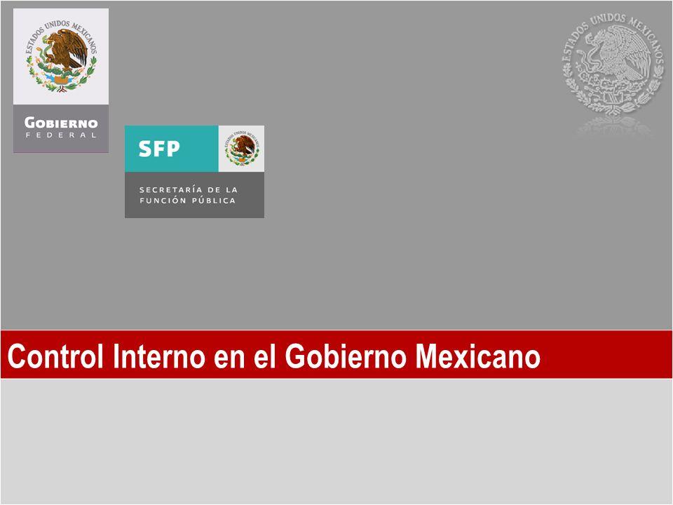 Control Interno en el Gobierno Mexicano