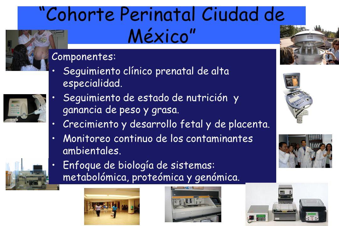 Cohorte Perinatal Ciudad de México