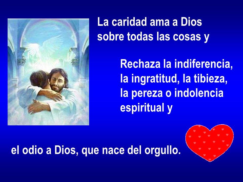 La caridad ama a Diossobre todas las cosas y. Rechaza la indiferencia, la ingratitud, la tibieza, la pereza o indolencia.