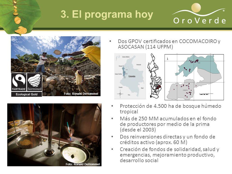 3. El programa hoy Dos GPOV certificados en COCOMACOIRO y ASOCASAN (114 UFPM) Foto: Ronald DeHommel.