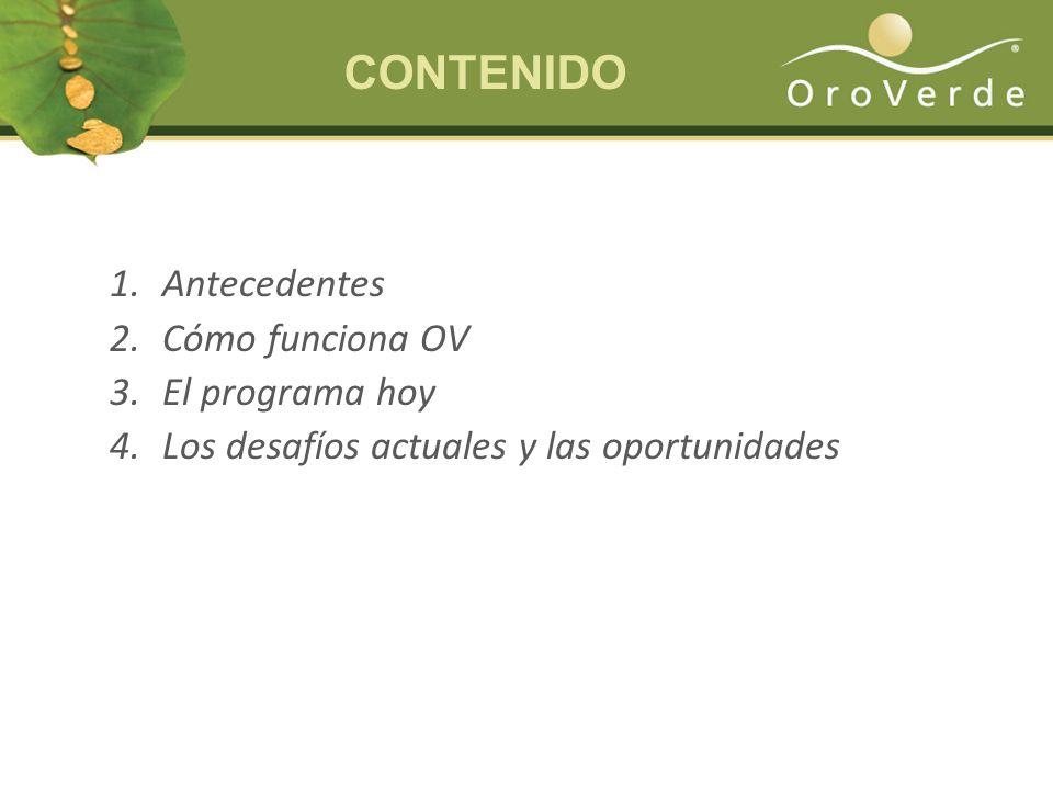 CONTENIDO Antecedentes Cómo funciona OV El programa hoy