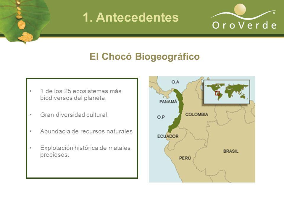 El Chocó Biogeográfico