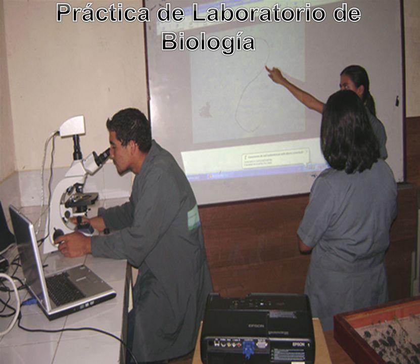 Práctica de Laboratorio de Biología