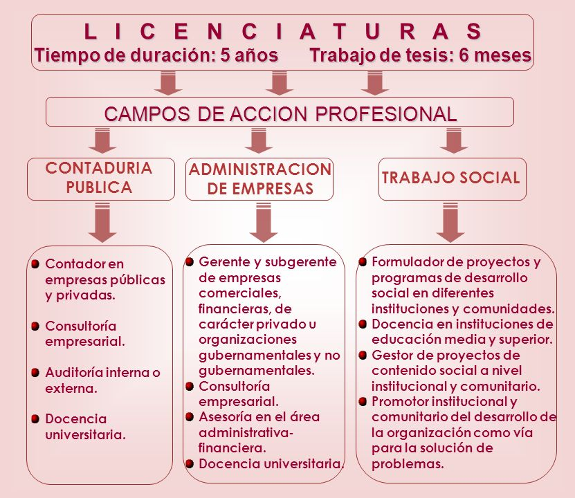 L I C E N C I A T U R A S CAMPOS DE ACCION PROFESIONAL