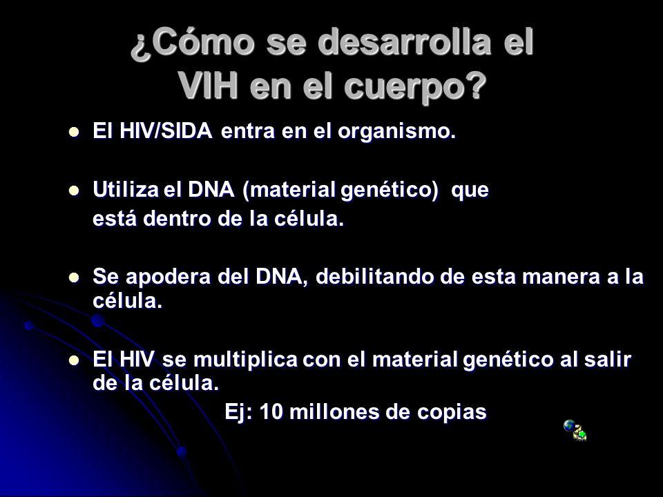 ¿Cómo se desarrolla el VIH en el cuerpo