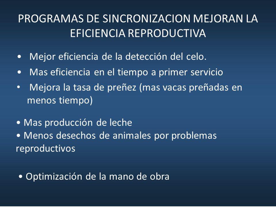 PROGRAMAS DE SINCRONIZACION MEJORAN LA EFICIENCIA REPRODUCTIVA