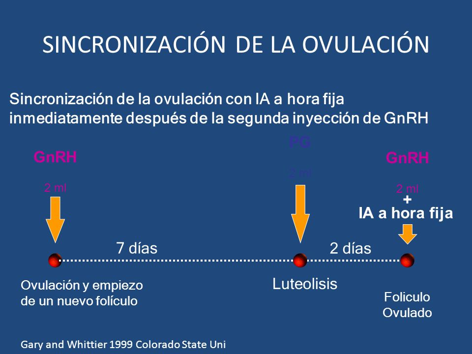 SINCRONIZACIÓN DE LA OVULACIÓN