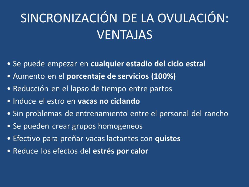 SINCRONIZACIÓN DE LA OVULACIÓN: VENTAJAS