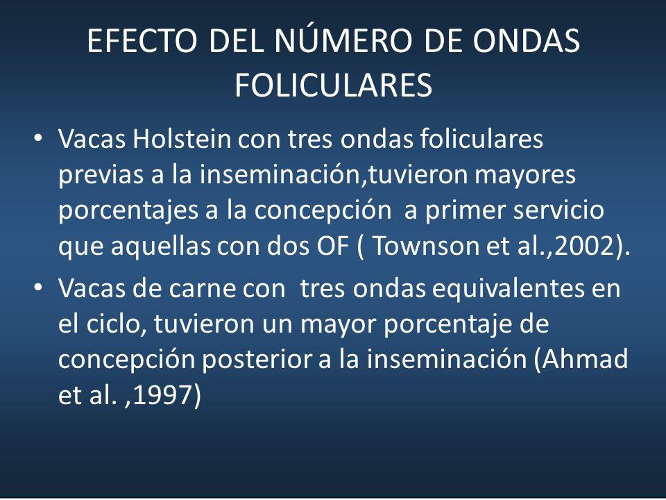 EFECTO DEL NÚMERO DE ONDAS FOLICULARES