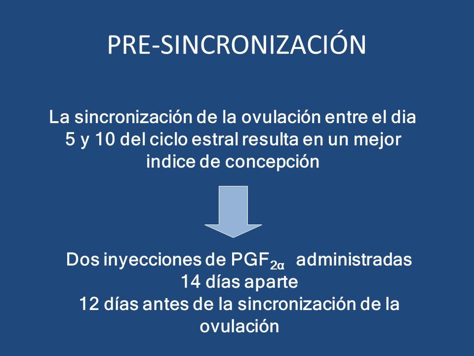 PRE-SINCRONIZACIÓN La sincronización de la ovulación entre el dia 5 y 10 del ciclo estral resulta en un mejor indice de concepción.