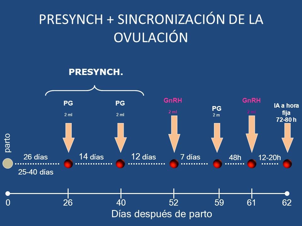 PRESYNCH + SINCRONIZACIÓN DE LA OVULACIÓN