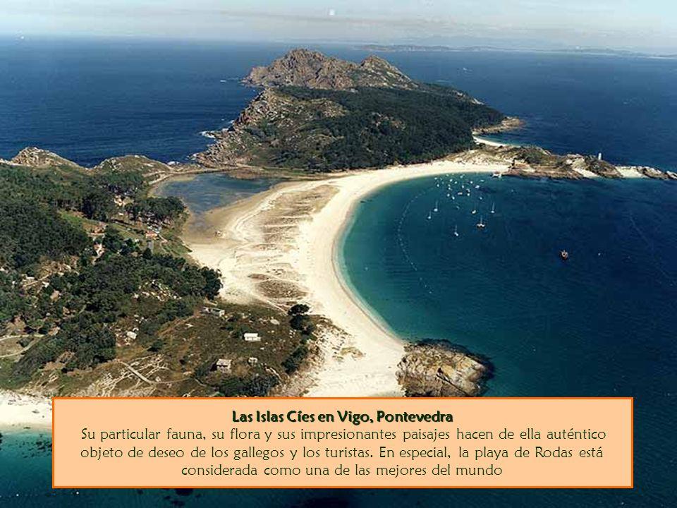 Las Islas Cíes en Vigo, Pontevedra Su particular fauna, su flora y sus impresionantes paisajes hacen de ella auténtico objeto de deseo de los gallegos y los turistas.