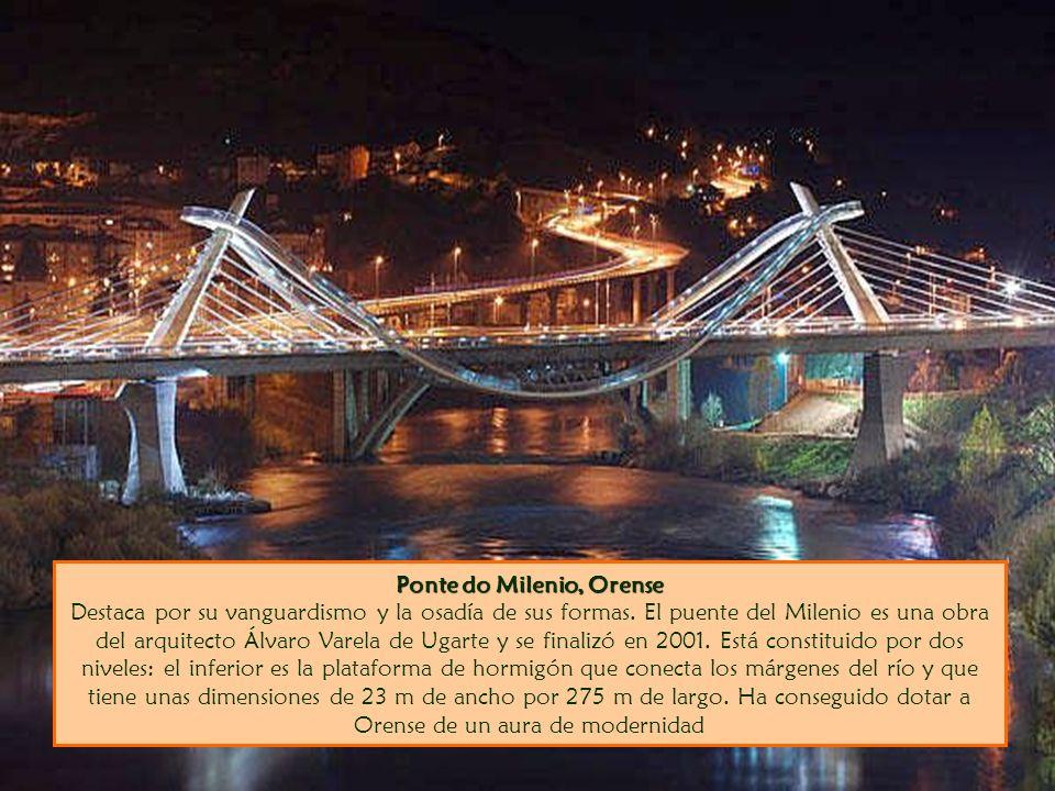 Ponte do Milenio, Orense Destaca por su vanguardismo y la osadía de sus formas.