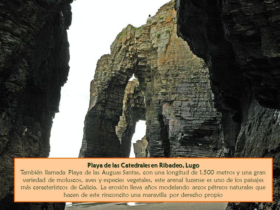Playa de las Catedrales en Ribadeo, Lugo También llamada Playa de las Auguas Santas, con una longitud de 1.500 metros y una gran variedad de moluscos, aves y especies vegetales, este arenal lucense es uno de los paisajes más característcos de Galicia.