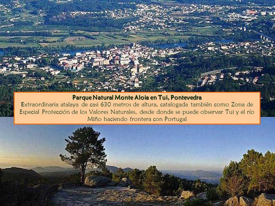 Parque Natural Monte Aloia en Tui, Pontevedra Extraordinaria atalaya de casi 630 metros de altura, catalogada también como Zona de Especial Protección de los Valores Naturales, desde donde se puede observar Tui y el río Miño haciendo frontera con Portugal