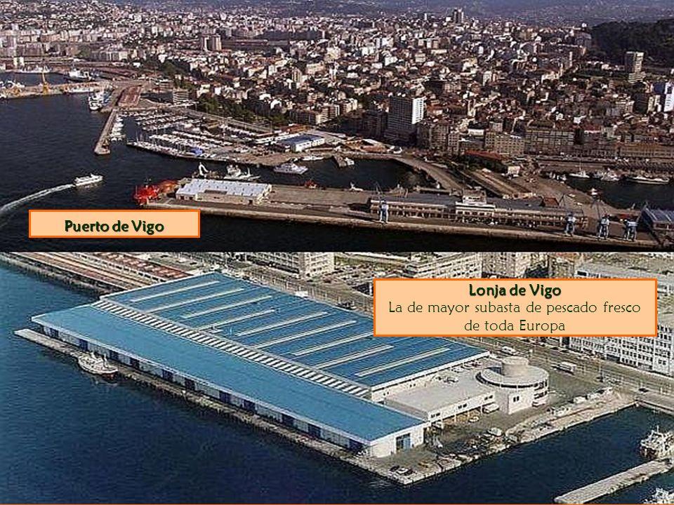 Lonja de Vigo La de mayor subasta de pescado fresco de toda Europa