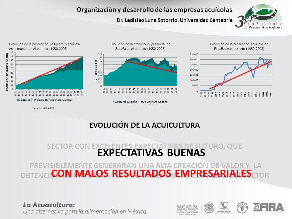 EXPECTATIVAS BUENAS CON MALOS RESULTADOS EMPRESARIALES