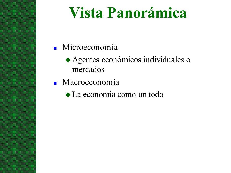Vista Panorámica Microeconomía Macroeconomía
