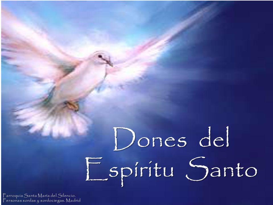 Dones del Espíritu Santo Parroquia Santa María del Silencio.