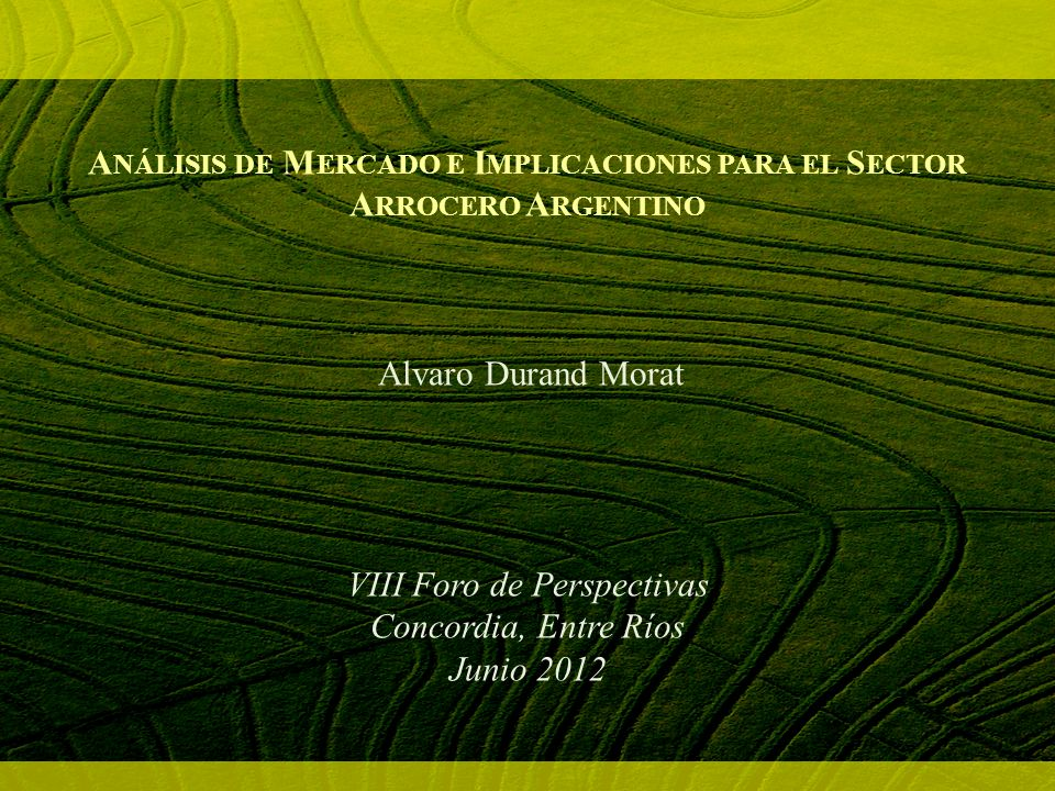Análisis de Mercado e Implicaciones para el Sector Arrocero Argentino