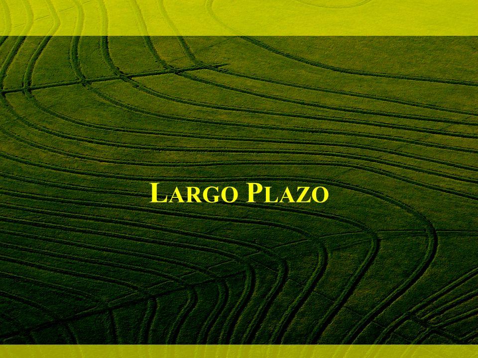 Largo Plazo