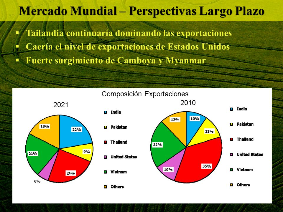 Mercado Mundial – Perspectivas Largo Plazo
