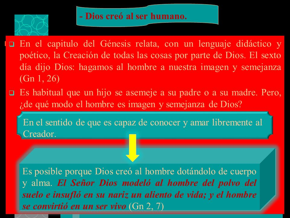 - Dios creó al ser humano.