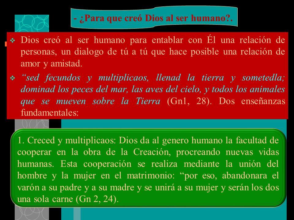 - ¿Para que creó Dios al ser humano .