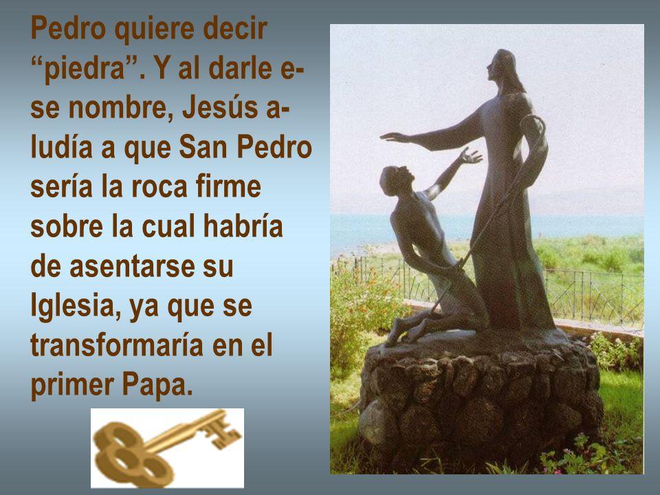 Pedro quiere decir piedra . Y al darle e- se nombre, Jesús a- ludía a que San Pedro. sería la roca firme.