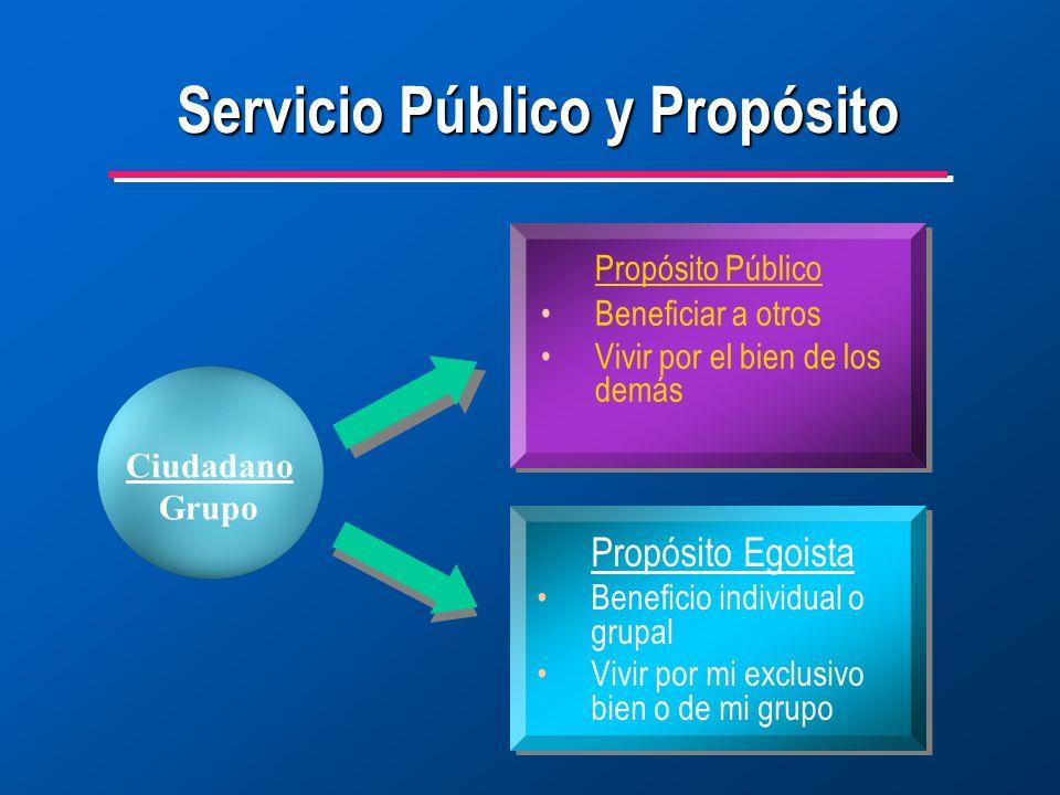 Servicio Público y Propósito