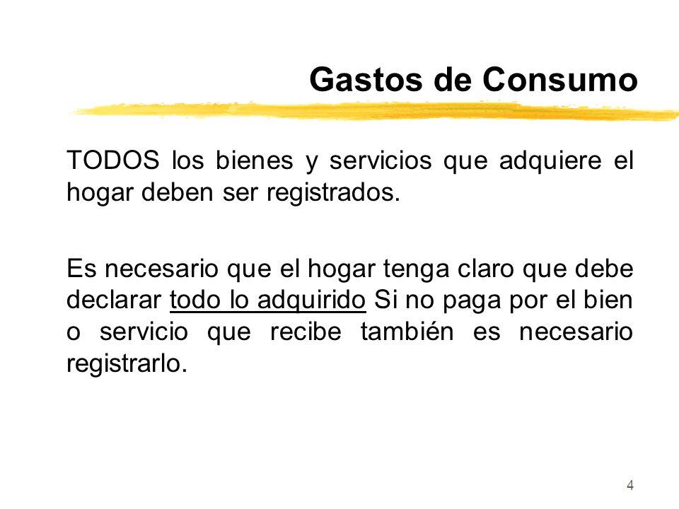 Gastos de Consumo TODOS los bienes y servicios que adquiere el hogar deben ser registrados.