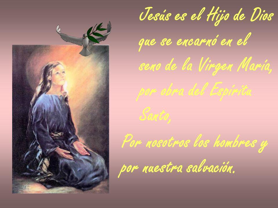 Jesús es el Hijo de Dios que se encarnó en el. seno de la Virgen María, por obra del Espíritu. Santo,