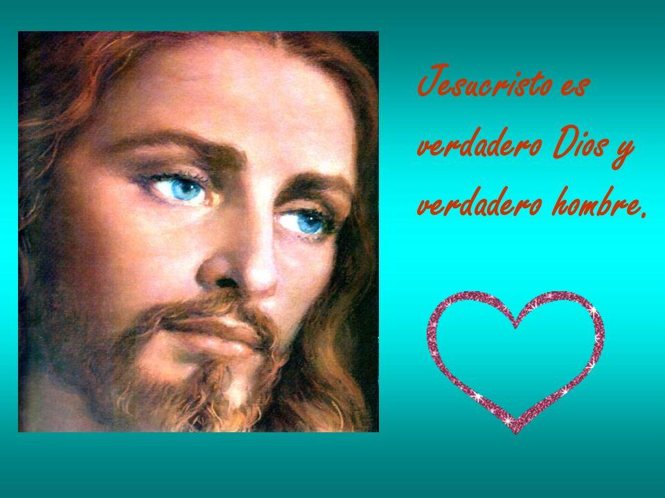 Jesucristo es verdadero Dios y verdadero hombre.