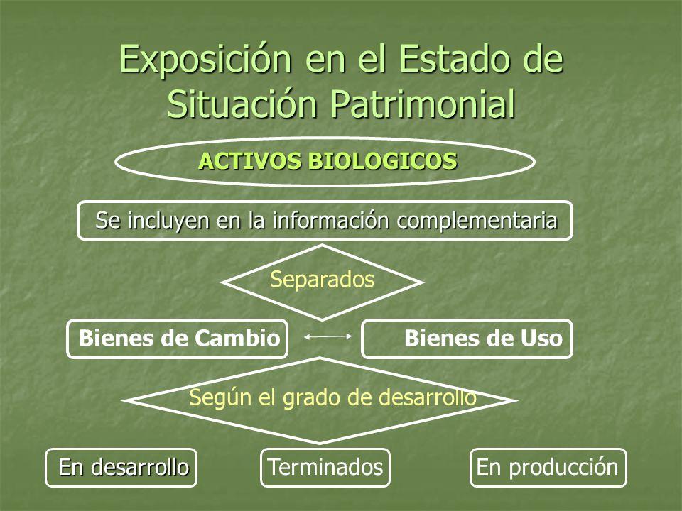 Exposición en el Estado de Situación Patrimonial