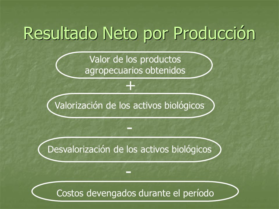 Resultado Neto por Producción