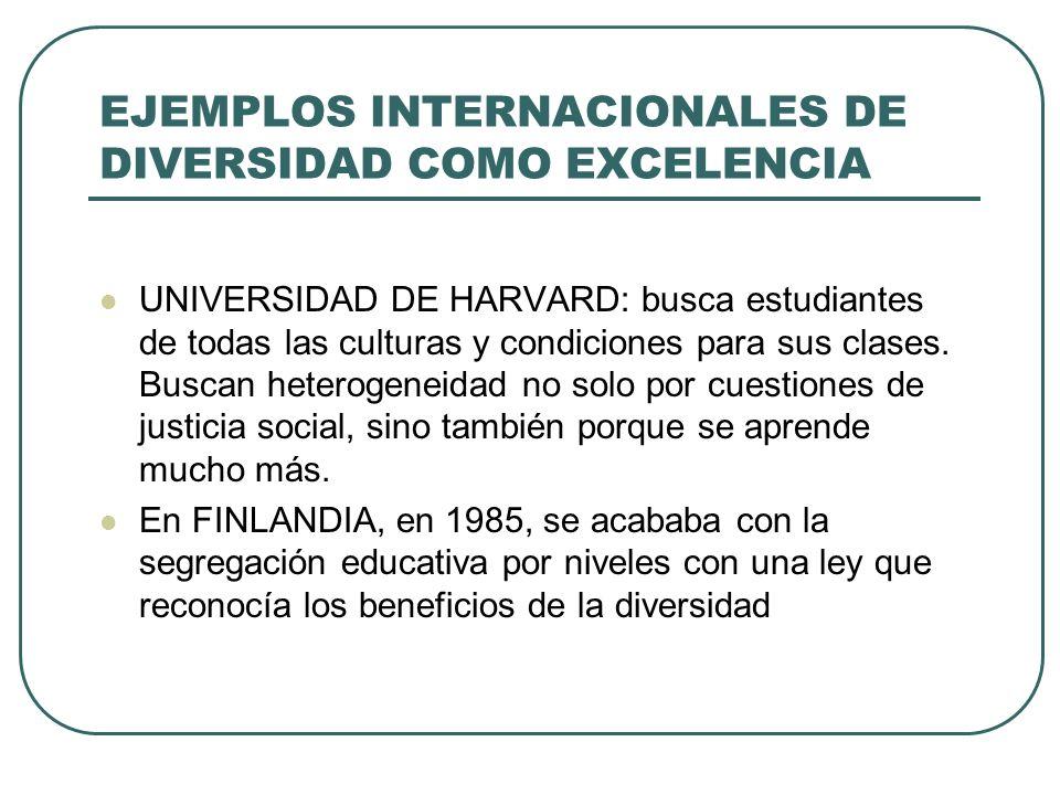 EJEMPLOS INTERNACIONALES DE DIVERSIDAD COMO EXCELENCIA
