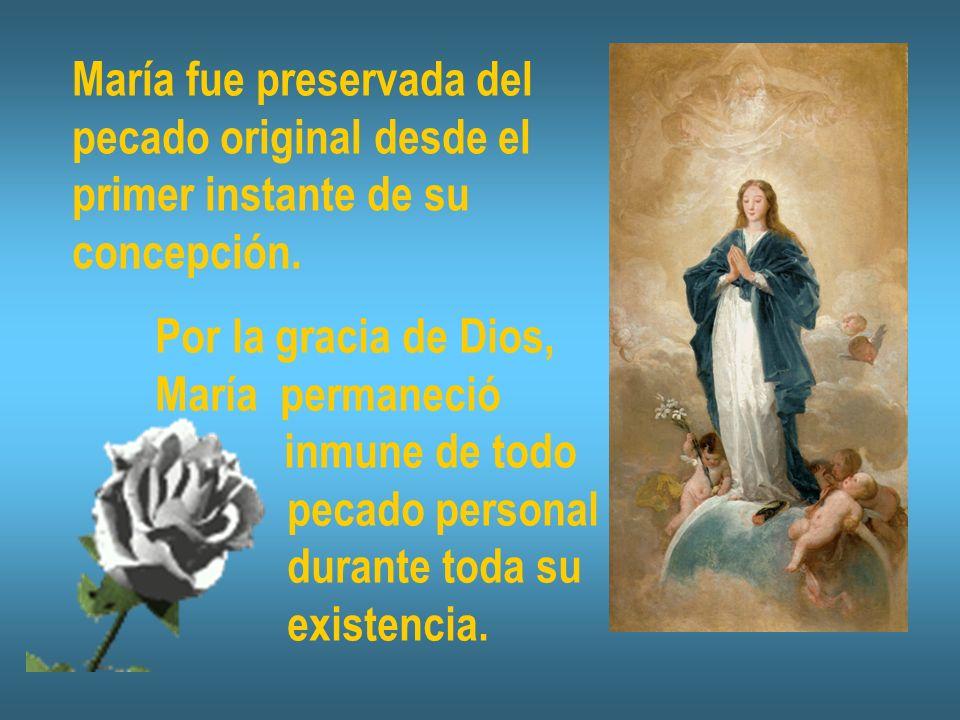 María fue preservada del