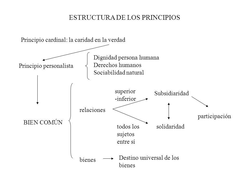 ESTRUCTURA DE LOS PRINCIPIOS