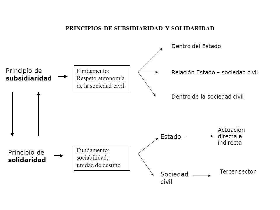 PRINCIPIOS DE SUBSIDIARIDAD Y SOLIDARIDAD